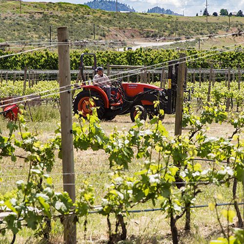 Oliver Osoyoos Wine Country - History