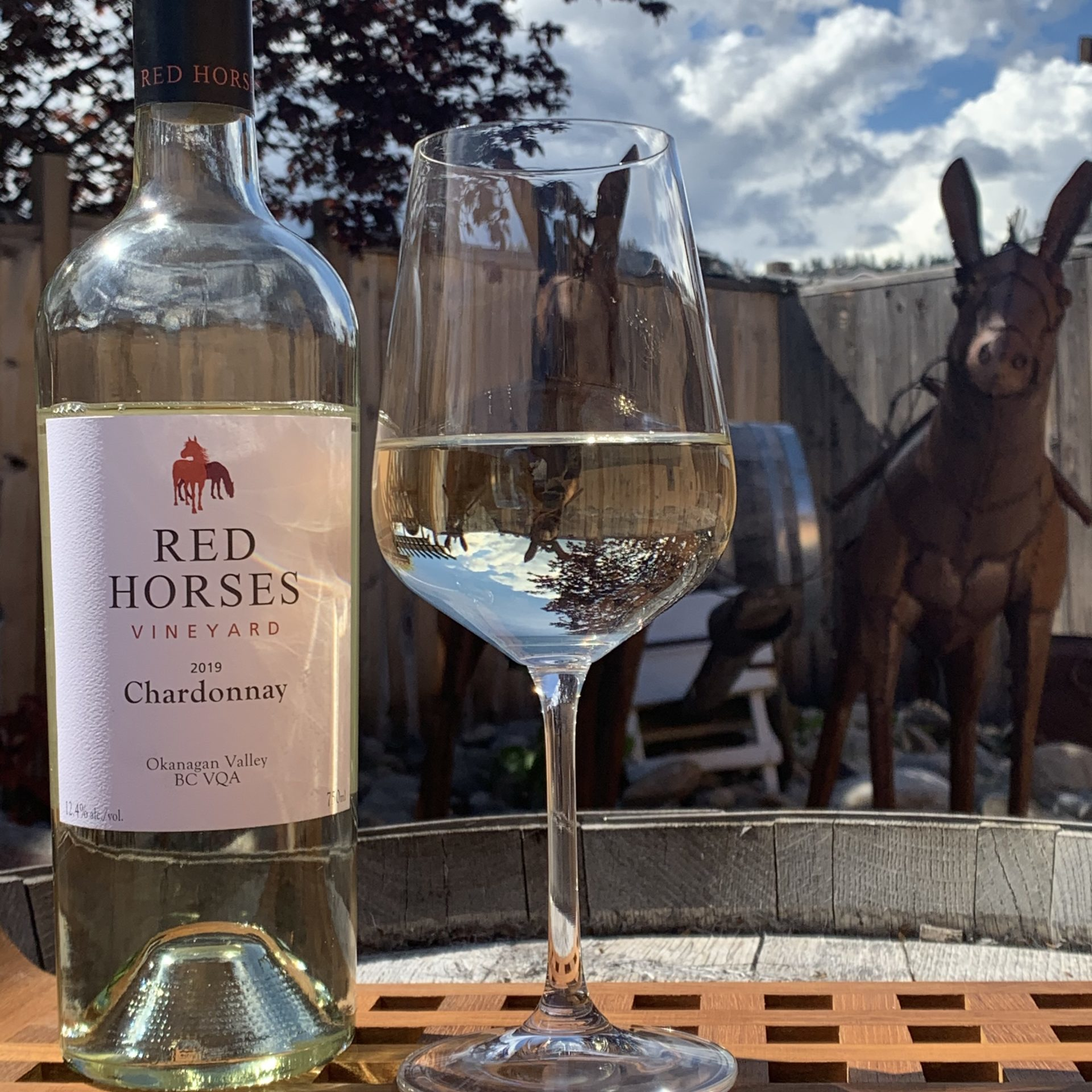 red horses chard